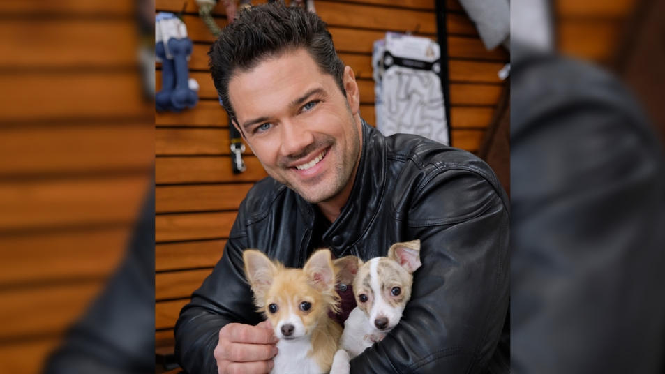 Ryan Paevey puppies